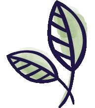 Green Earth Naturals